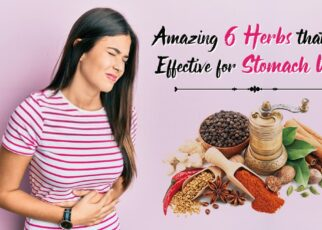 Amazing 6 Herbs that are Effective for Stomach Upset